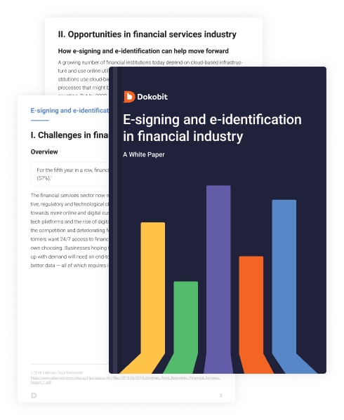 Thumbnail pages of Financial Teams and Dokobit: A White Paper
